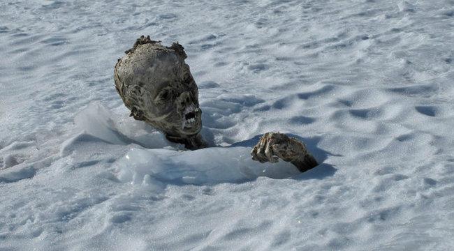 Hihetetlen: 55 éves hullákat találtak