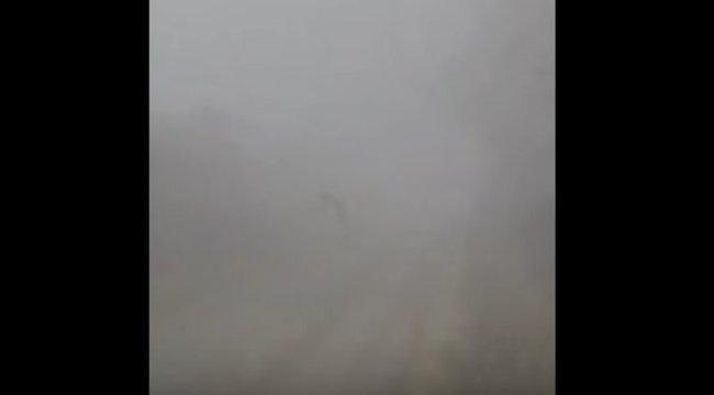 Fanyűvőt láttak a kunszigeti ködben?