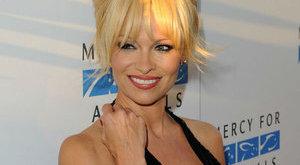 Svájci üzletember bérelte ki Bécsben Pamela Andersont