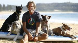 Kutyaidomítás a hullámok hátán - látványos fotók