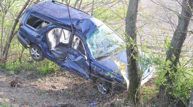 Fának csapódott egy autó Pest megyében - fotók
