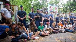 Több száz rendőr űzte ki a maroknyi ligetvédőt