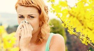 Harcoljon az allergiája ellen így!