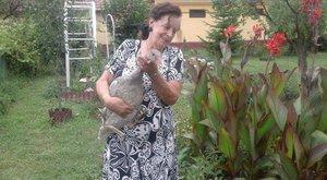 Macska szájában érkezett Müzli, a család házörző madara