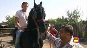 4,5 millióért vett lovat Bettinek Pintér Tibor