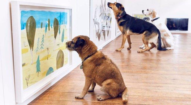 Még hogy a kutyát sem érdekli a művészet!