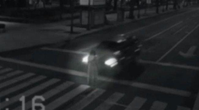 Halottat ütöttek el a zebrán - paranormális videó