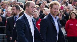 Szobrot kap fiaitól Diana hercegnő