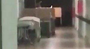 Gyerekkísértet paráztatja a nővéreket a kórházban