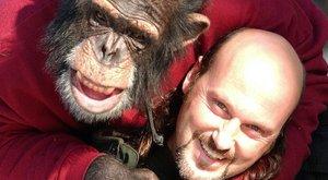 A bíróság dönt: a majom is ember?