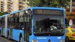 Ki élesztette újra a budapesti a buszsofőrt?