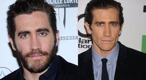 Kérdezzen JakeGyllenhaaltól!