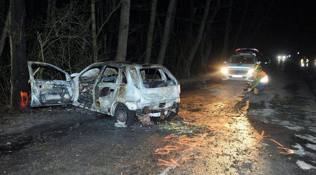 Tragikus baleset Ócsán: fának csapódott, majd halálra égett egy sofőr – fotók