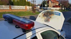Kigyulladt egy rendőrautó Maglódon