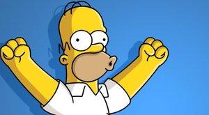 Ez az igazi megszállottság: 53 Simpsons-tetkója van egyetlen karján! fotó