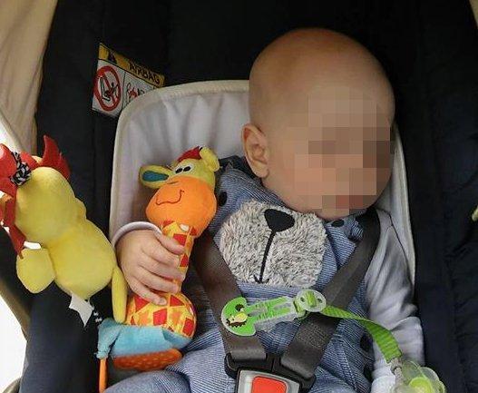 Ez meg mire volt jó  Ellopták egy kisbaba zsiráfját  43115f2466