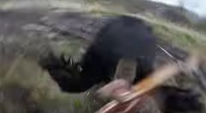 Sokkoló felvételt készített a vadász arról, ahogy rátámad egy medve – videó