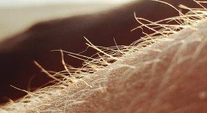 Meglepő kijelentést tett a szőrős férfiakról egy tudós