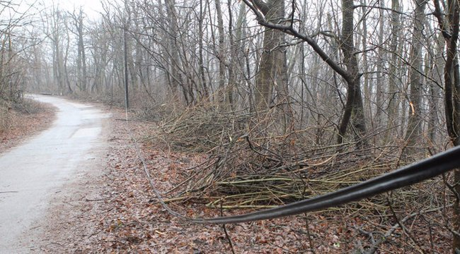 Jön! Már fákat döntött ki éstüzet is okozott a vihar Északkelet-Magyarországon