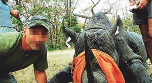 Kiderült, milyen körülmények között végzett az orrszarvú a magyar ökológussal