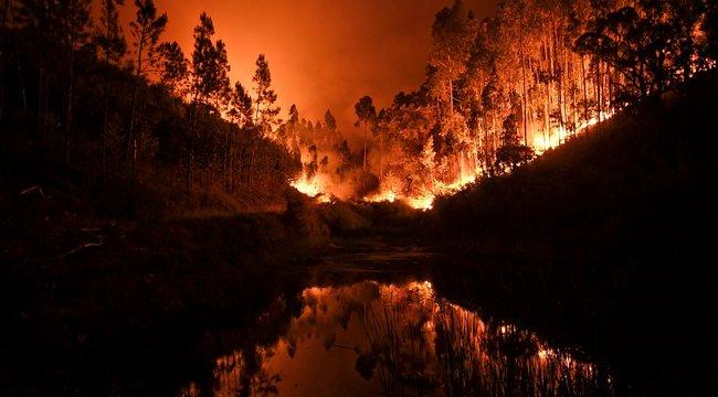 Portugál pokol: már 62 halottja van az erdőtűznek