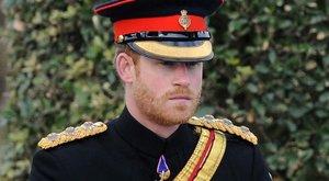 Gondolta volna? Imádja a sereget Harry herceg