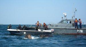 Elefántpárt mentett a haditengerészet – videó