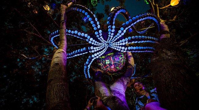 Művészi Kánaán lesz a Sziget Fesztiválon