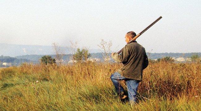 Vizsgálatot indítottak a strandon a vadmalacot kivégző vadász ellen