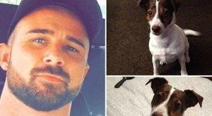 Borzalmas, miért gyilkolta meg terhes barátnője kutyáját a férfi