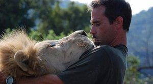 Csókolj meg, babám! – mondta az árva oroszlánok gondozója (videó)