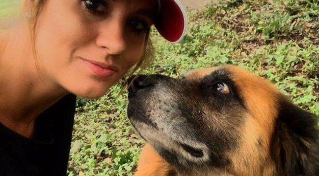 Nem véletlen ő a hurrikán sújtotta Texas kedvenc kutyája - fotó