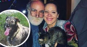 Kajla kutya csalta haza Tóth Vera cicáját