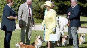 Vírustól félti kedvenceit Erzsébet királynő