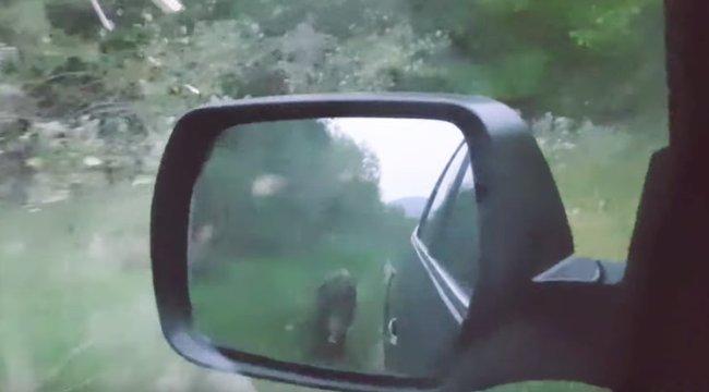 Az év egyik legemlékezetesebb videója: magyar vadászt kergetett a vaddisznó