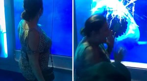 Ez a nő egy életre megtanulta, mit ne csináljon cápák közelében