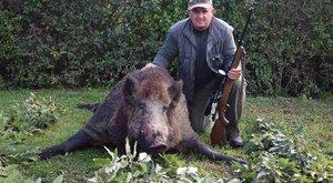 250 kilós trófea:hajsza után lőtte meg élete vadkanját József