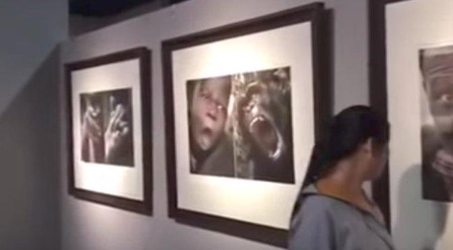 Durván rasszista kiállítás akasztotta ki a látogatókat - videó