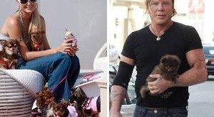 Kutyája akadályozta meg a színész öngyilkosságát