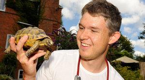 Szájból szájba lélegeztette haldokló teknősét