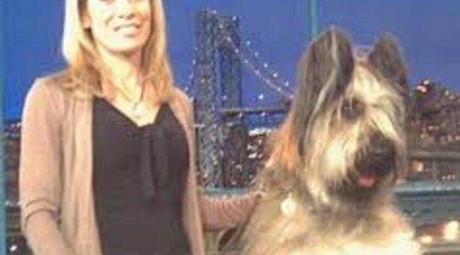 Döbbenetes hobbija van a kutyának - videóval