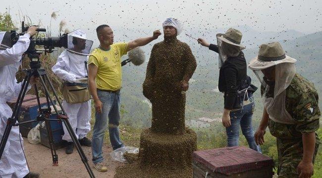 Sokkoló: félmillió méh lepte el a férfi testét