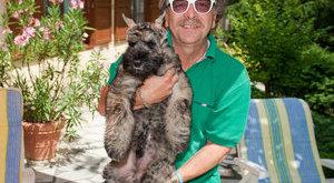 Kétségbeesve keresi gazdáját Bajor Imre kutyája
