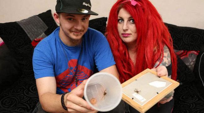 Brutális pókinvázió áldozata lett a család