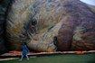 Hőlégballon-fesztivál Izraelben