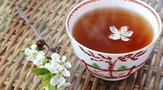 Szent indián teában bíznak a rákos betegek