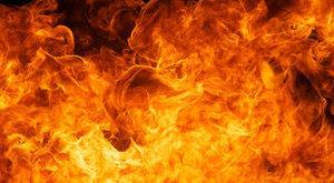 Tűz pusztított a budapesti cirkuszi táborban