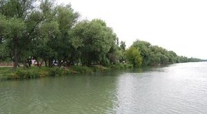 Ismeretlen holttestet találtak a Duna-parton