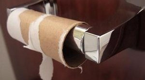 Ha nem vesz vécépapírt, ez vár Önre az albérletében