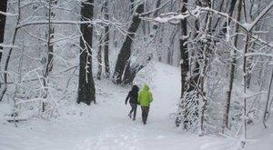 Mégis tél van: a Bakonyban hatalmas hó esett - fotók
